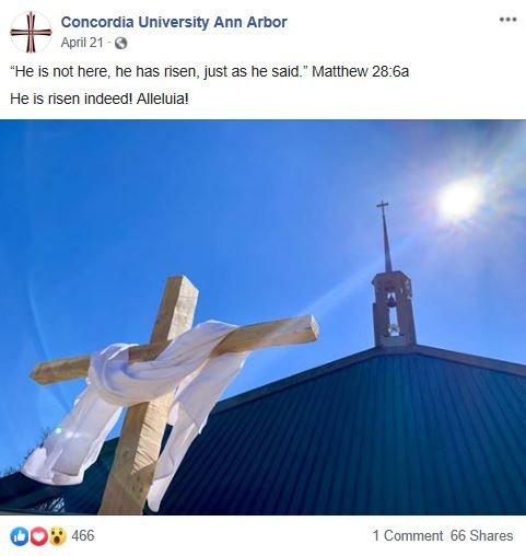 FB post 2 2019