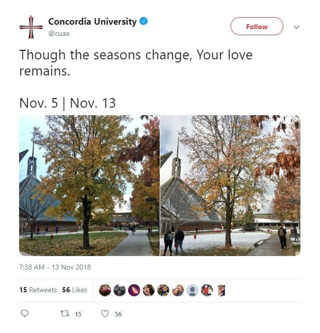 Seasons change on the Concordia University Ann Arbor campus.